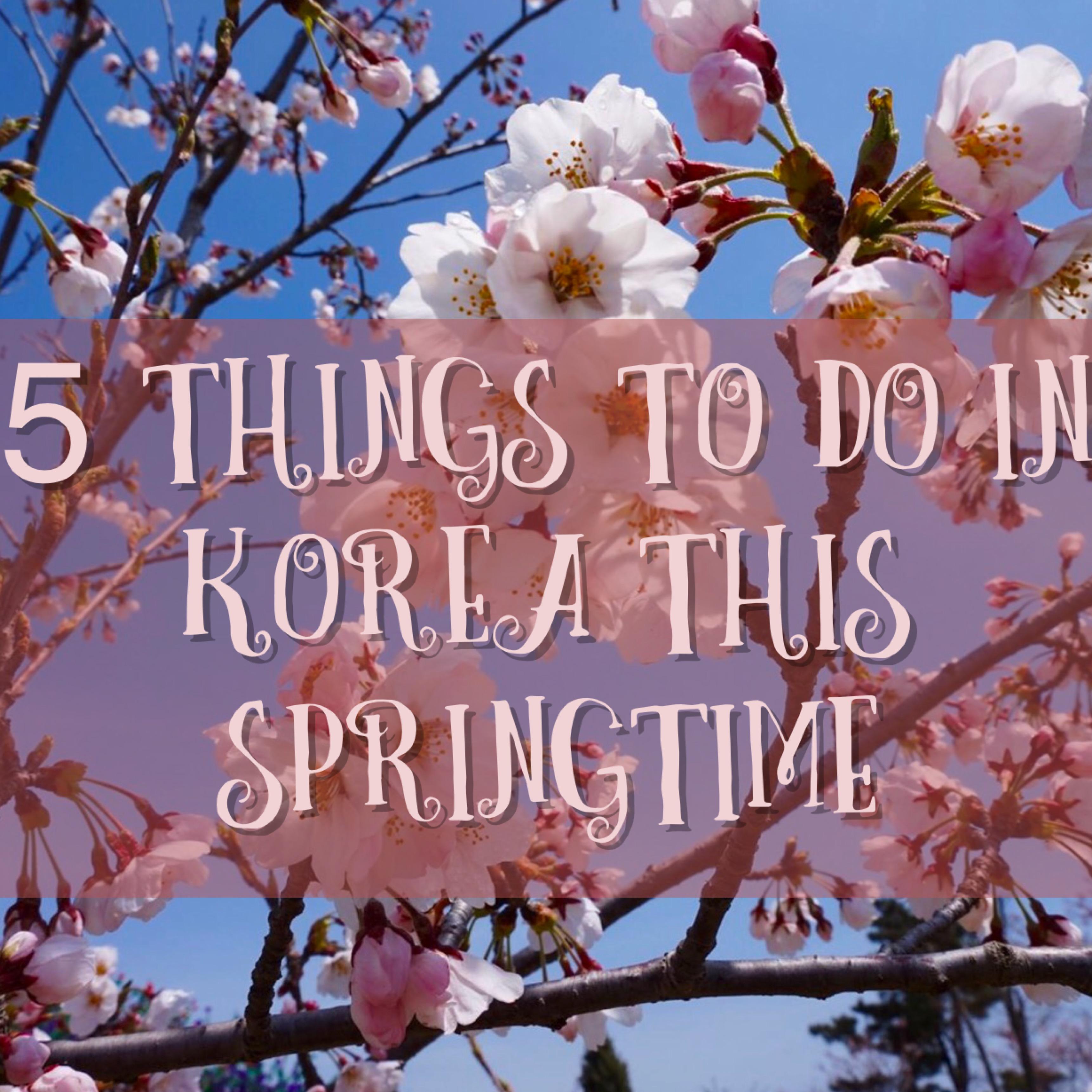 5 Things to do in Korea this Springtime