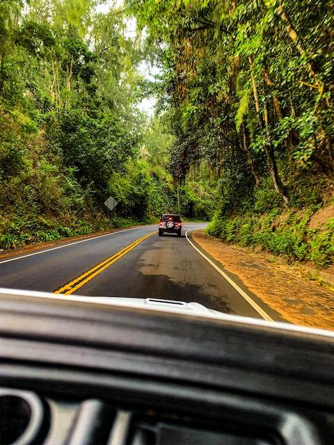 driving road to hana